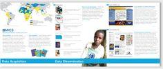 3 Fold Mics Brochure Print Design - unicef