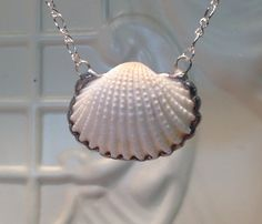 Cockle Shell Necklace Soldered Sea Shell Pendant by WorkofWhimsy