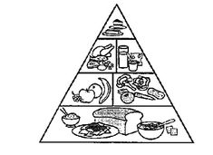 Free Coloring Pages Christmas Trees Awesome Food Pyramid Coloring Pages Balep Midnightpig Race Car Coloring Pages, Creation Coloring Pages, Fox Coloring Page, Lego Coloring Pages, Bunny Coloring Pages, Pokemon Coloring Pages, Online Coloring Pages, Coloring Pages For Kids, Food Pyramid Kids