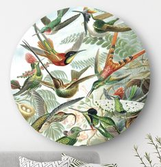 Kolibries Trochilidae Ernst Haeckel: rond schilderij vogels | HIP ORGNL Ernst Haeckel, Home Deco, Interior Design, Poster, House, Products, Photos, Nest Design, Home Interior Design
