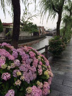 栃木 蔵の街