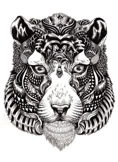 Iain macarthur  Wildlife: tiger stare (2010) ink