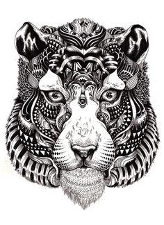 Iain macarthur  Wildlife: tiger stare (2010) ink