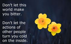 Dont-let-thos-world-make-you-bitter-yellow-daffodils1-e1426128912109.png (1920×1200)