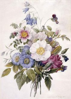 Love the colors in this one  Eugene A. L. d'Orleans, Blue Asters, Rosa Spinosissima hyrbird, Harebell, Violas, Carnation and a Wild Rose, 1820