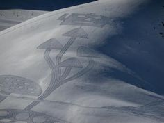 crop circles in the snow... :)