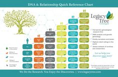 Legacy Tree Genealogists is a worldwide provider of professional genealogy research services. Our team of genealogists can discover your family! Ancestry Dna, Genealogy Research, Family Genealogy, Genealogy Websites, Genealogy Humor, Genealogy Chart, Cousin Relationships, Dna Test Results, Dna Research