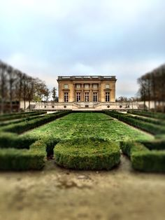 Versailles..  Photo by Andrea Duffy