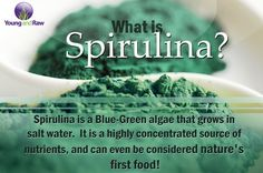 Spirulina is a complete protein. This means that it contains all 8 essential amino acids that you have to obtain from your diet.   Spirulina is a plant based source of vitamin B12, boasting 3-4 times the amount that you would generally find in animal liver.  Spirulina is rich in minerals such as iron, potassium, magnesium, sodium and calcium. It is also high in vitamins such as B vitamins, beta-carotene, vitamin K and vitamin E.