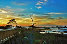 Check out this gorgeous sunset pic from Assateague Island National Seashore. A 37 mile long island along the coasts of Maryland and Virginia, Assateague Island gives visitors an chance to explore sandy beaches, salt marshes, maritime forests and coastal bays. Rest, relax, recreate and enjoy some time on the edge of the continent at Assateague. Photo courtesy of Bob Ferralli.