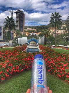 #qwell #qwellworldtour #pictures #traveling #monaco #france  #collagenwater #collagen  #smart #hydration #beautyfromwithin #travelphotography