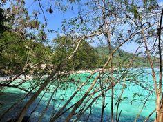Weg zum Banana Beach auf Koh He Banana Beach, Strand, Coral, Plants, Small Island, Planters, Plant, Planting, Planets