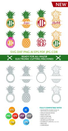 Pineapple SVG Monogram Frames Cut Files - SVG DXF Silhouette Studio Png Eps Pdf Jpg Ai Cdr cuttable for Silhouette Studio, Cricut, Cameo Cricut Monogram, Monogram Frame, Monogram Fonts, Cricut Vinyl, Silhouette Cameo Projects, Silhouette Design, Silhouette Studio, Vinyl Crafts, Vinyl Projects
