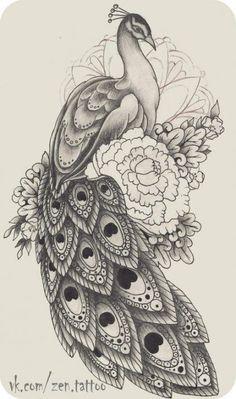 70 New Ideas Tattoo Thigh Tatoo Bird Drawings, Pencil Art Drawings, Art Drawings Sketches, Animal Drawings, Cute Drawings, Tattoo Drawings, Peacock Drawing, Peacock Tattoo, Peacock Art