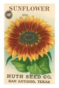Vintage Seed Packet Templates shows many templates with flower and vegetable images, all free to use for your own non-commercial purposes.