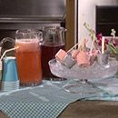 Yummy recipes for lemonade and frozen pudding pops!  The kids will definitely dig this.