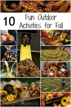10 fun, fab, free, fall activities for kids to do outside - Happy Hooligans