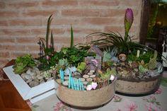 Photo de Helly Barbaud. Jardins miniatures et de fées , Mars 2016 .