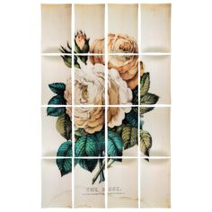 John Derian Company Inc — Rose (16 Pieces)