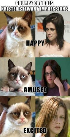 Grumpy Cat vs. Kristen Stewart Impressions - www.meme-lol.com