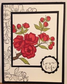 Stampin' Up! Indescribable Gift, February Workshop -- Card cased from Sharon Burkert
