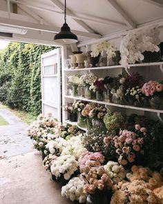 Awesome Florist Shop Design and Decor Ideas 21 - Awesome Indoor & Outdoor Flower Farm, My Flower, Wild Flowers, Beautiful Flowers, Fresh Flowers, Spring Flowers, Colorful Flowers, Beautiful Things, Design Jardin