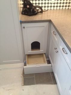 Awesome Ways To Hide A Cat Litter box.place in the mudroom/laundry room.must make the open doorway bigger for my cats to fit. Cat Room, Laundry Room Storage, Laundry Rooms, Closet Storage, Storage Room, Storage Shelves, Cat Furniture, Pets, Decoration