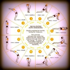 Surya Namaskar stimulates almost every system in your body - the cardiovascular system because it keeps the heart strong and, the digestive system as well as the nervous system.    - It also makes endocrinal glands like the thyroid, parathyroid and pituitary glands, function normally.    - Practising the Surya Namaskar regularly is also known to ease stress and giveyou peace of mind besides increasing your levels of concentration.  .