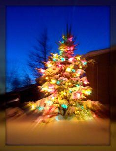 Snowed Christmas Tree