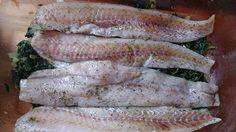 Ala'Antkowe BLW » Zapiekanka rybna w sosie koperkowym (ze szpinakiem)