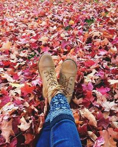 Fall leaves!!!