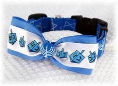 Dog collar-Hanukkah