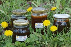 Púpavový med s bylinkami a včelím peľom