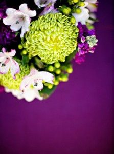 Eggplant and and chartreuse wedding colors