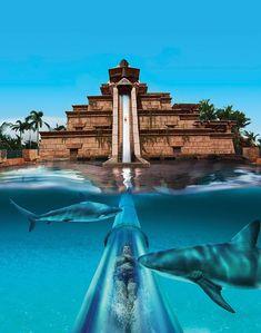 Aquaventure - Dubai
