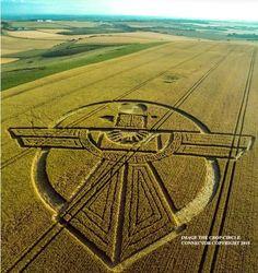 Crop Circle simbolo dei Wakinyan, il popolo alato del cielo, compare a Barbury Castle, Wiltshire crop wakinian963