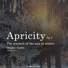 Apricity Apricity – themindsjournalc … The post Apricity appeared first on Woman Casual - Life Quotes Unusual Words, Weird Words, Rare Words, Cool Words, Unique Words With Meaning, Interesting Words, Word Meaning, One Word Quotes, Motivacional Quotes