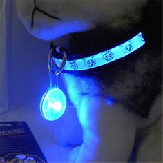 cool #Blue Fashion #Pet #Dog #Cat #Puppy #LED Flashing Collar #Safety #Night Light Pendant.