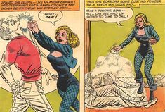 Black Canary - DC Comics - The 1960s - Character profile - Justice Society - Writeups.org Ted Knight, The Ronettes, Justice Society Of America, Arrow Oliver, Age Of Aquarius, Detective Agency, Character Profile, Tough Girl, Martial Artist