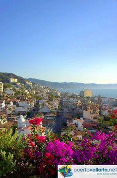 Beautiful downtown Puerto Vallarta