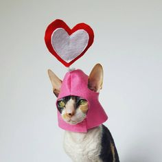 For your sweetest pet!  This adorable hat features a red and white heart posed above your pets head. Sweet thoughts from your sweet furry or non furry friend. Made with velcro for the safety of your pet and ease of costuming.  This hat comes in three sizes.  Small- fits peterbald, sphynx, cornish rex, and smaller sized cat heads like kittens.  Large- fits most domestic short and longhair cats, smaller dogs like chihuahuas.  X Large- fits most dogs with from French bulldog, Boston terrier…
