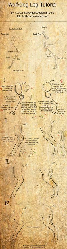 Wolf/Dog leg tutorial by CasArtss