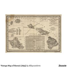 Vintage Map of Hawaii (1893) Poster