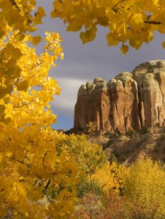 Yellow Leaves of Fall Frame a Rock Formation, Santa Fe, New Mexico, USA Photographic Print