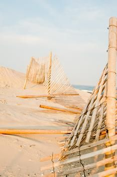 dune fences by Deana Clement Michie for Minted.