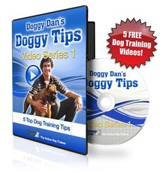 Does Your Dog Have Some Habits You'd Like To Fix... IF Only You Knew How? Discover The Powerful Dog Training Secrets To Eliminate These 5 Common Behavioral Dog and Puppy Issues   http://www.dogtrainingessentials.myresourcesystem.com/