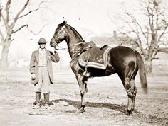 General Ulysses S.s horse, Cincinnati, in This was Grant's favorite horse, and he rode Cincinnati to negotiate Robert E.s surrender at Appomattox Court House in four years after this stereogram was taken. American Civil War, American History, American Presidents, Old Pictures, Old Photos, Vintage Horse, Civil War Photos, Us History, Interesting History
