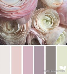 Design Seeds celebrate colors found in nature and the aesthetic of purposeful living. Colour Pallete, Colour Schemes, Color Patterns, Color Combos, Color Palettes, Room Colors, House Colors, Colours, Paint Colors