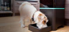 La startup Petnet a inventé Smartfeeder (Etats-Unis), un distributeur de nourriture intelligent qui délivre la quantité nécessaire en fonction du profil de l'animal. Technique : capteurs pour identifier le nombre de calories ingérées par chaque animal. Ces analyses sont communiqués au propriétaire pour l'aider à définir, depuis son smartphone, les heures de repas et les quantités à distribuer. 2015 Vidéo : http://youtu.be/RaoKjD1XpeI Site web : http://www.petnet.io