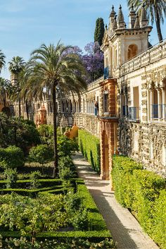 This place seems familiar to you? You may have seen it in the Game of Thrones series. The Alcazar de Sevilla is one of the most beautiful monuments that I have visited so far. Places Around The World, Travel Around The World, Around The Worlds, Magic Places, Places To Go, Alcazar Seville, Barcelona, Granada, Spain And Portugal